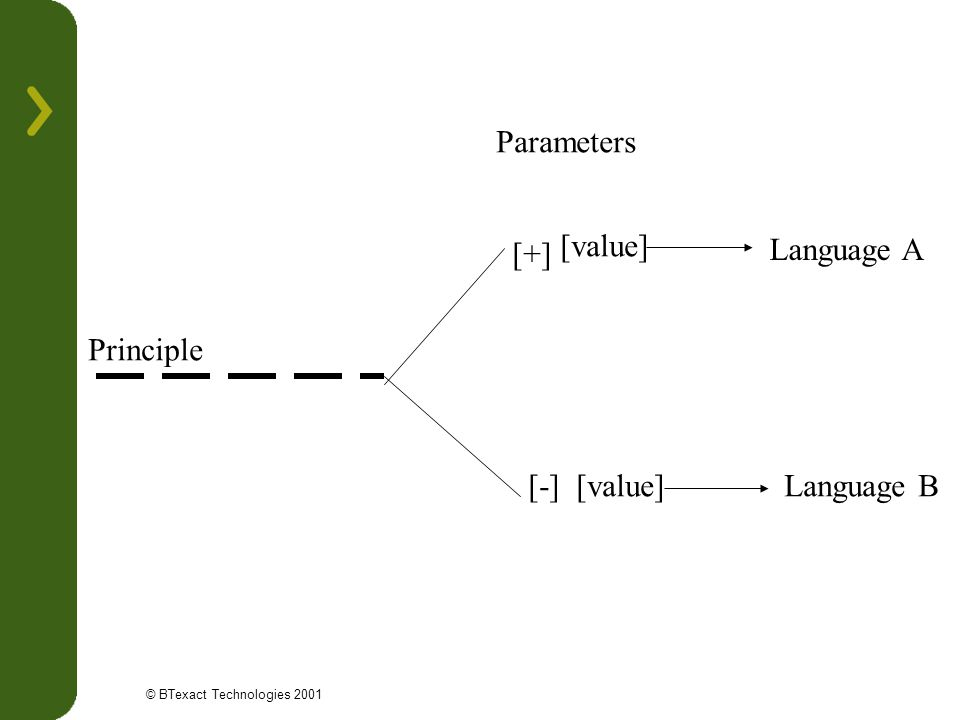 Parameters [value] [+] Language A Principle [-] [value] Language B